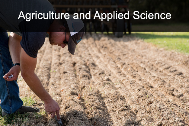 UT Martin Dual Enrollment Agriculture and Applied Sciences courses link