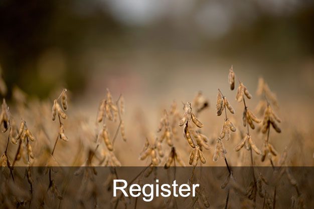 Image of Soybean Field with link to registration form