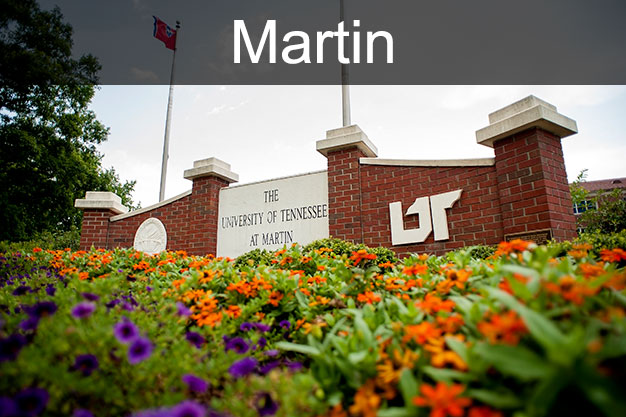 UT Martin nondegree courses link