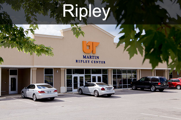 UT Martin Ripley Center nondegree courses link