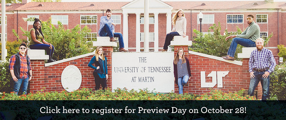 Preview Day